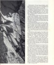 Profil Fritze Wiessnera;  dobový tisk 2